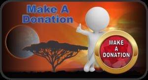 Make Donation Button